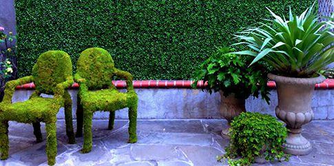 Комплексное озеленение помещений