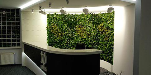 Обслуживание систем вертикального озеленения
