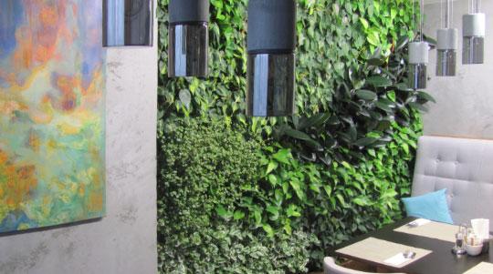 Вертикальное озеленение, как интересное дизайнерское решение в интерьере ресторана, г. Киев