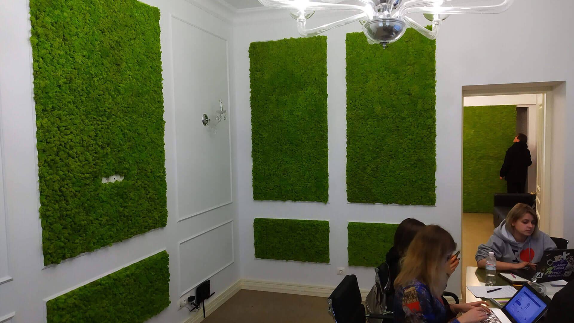 Озеленение офиса панелями со стабилизированным мхом, г. Харьков
