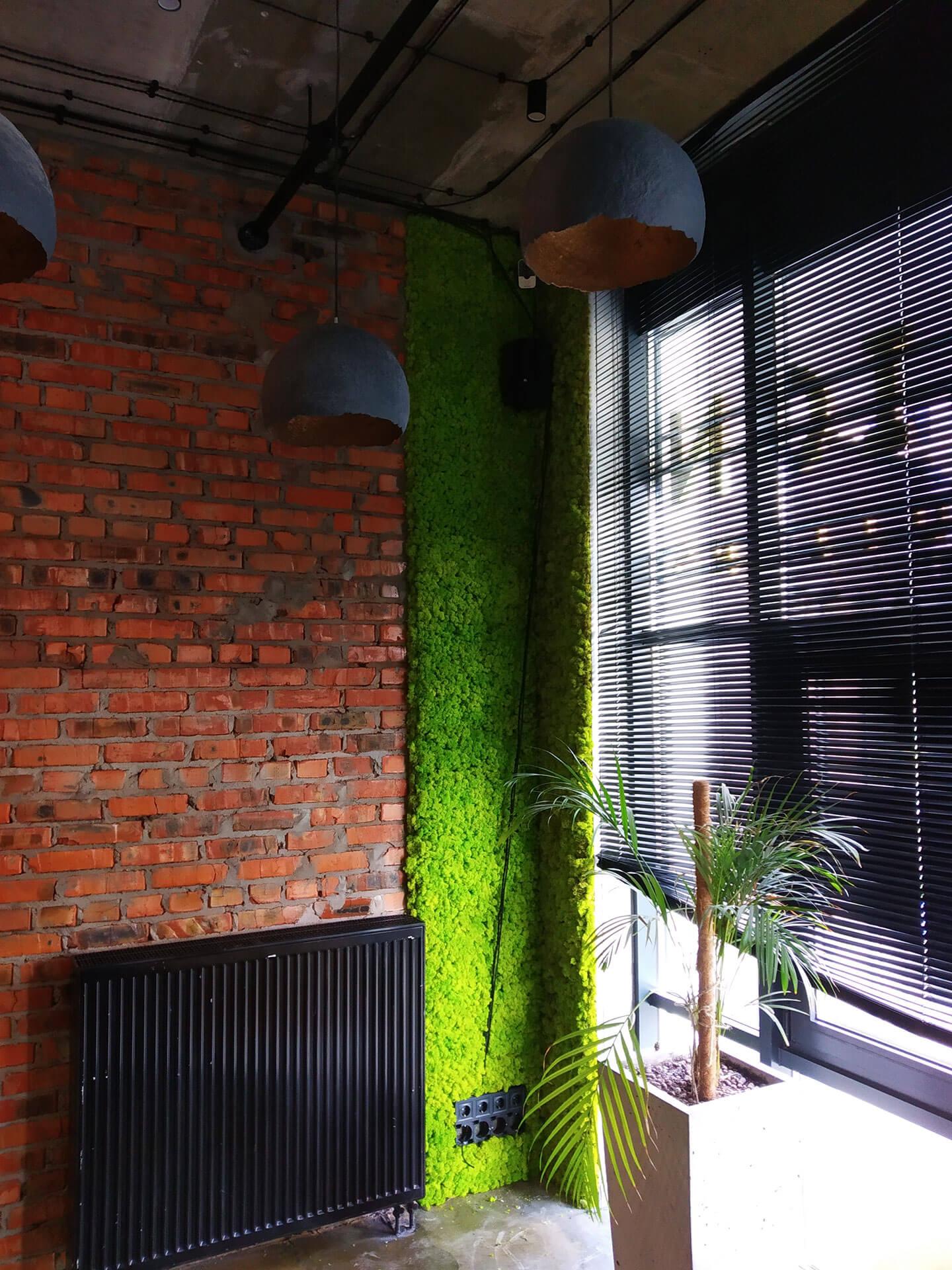 Озеленение офиса панелями со стабилизированным мхом, г. Киев